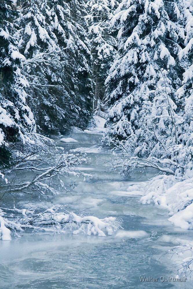 Frozen World - Brook by Walter Quirtmair