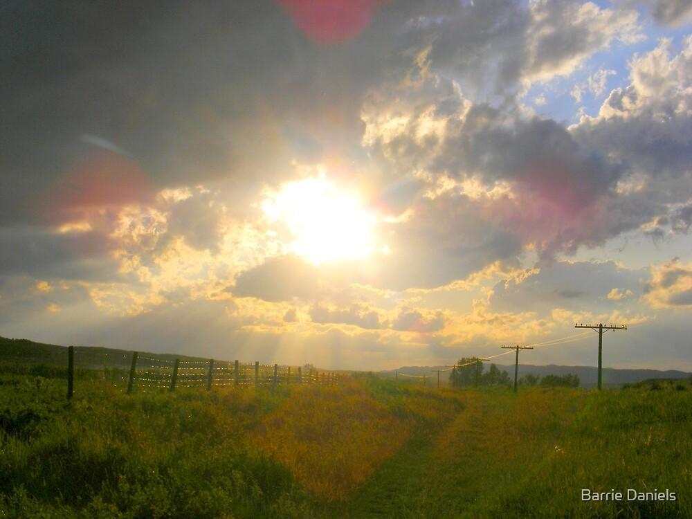 Country walk by Barrie Daniels