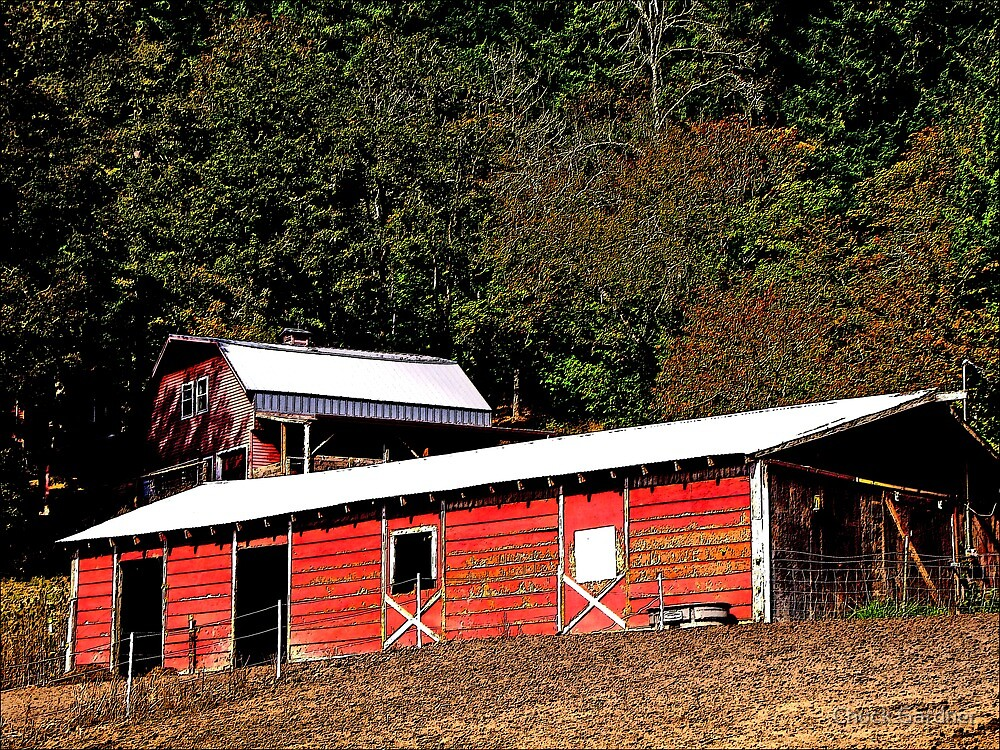 Two Red Horse Barns on Top of a Hill by Chuck Gardner