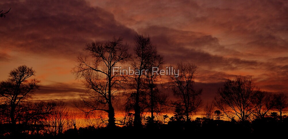 Winter Sunset #2 by Finbarr Reilly