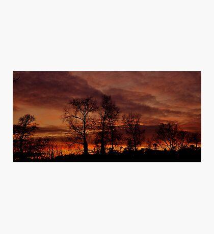 Winter Sunset #2 Photographic Print