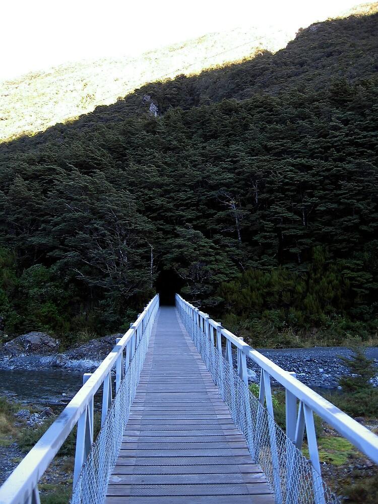 Arthur's Pass, New Zealand- Bridge by Michael Berns