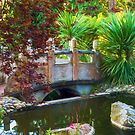 Contemplation Bridge by Bonnie M. Follett