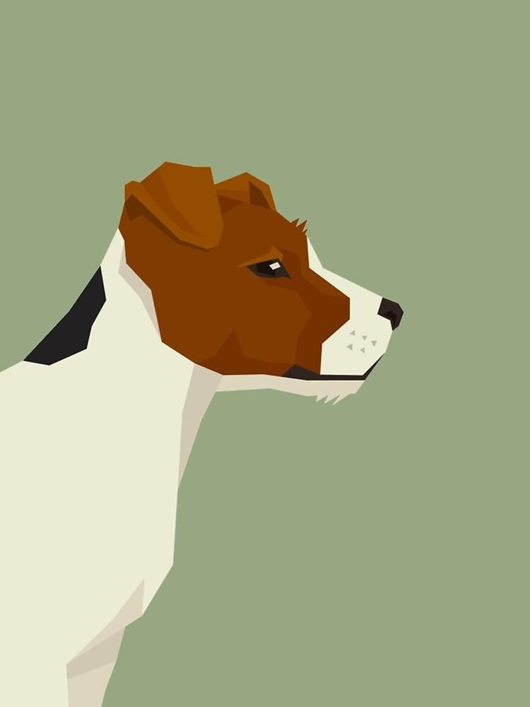 Jack Russel Terrier by tcarey