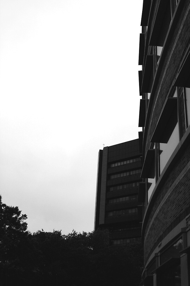 UCLA Buildings  by Michael Berns