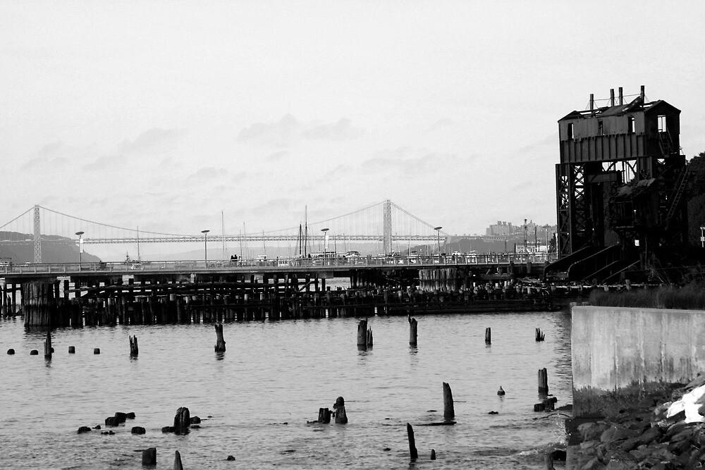 Hudson River and George Washington by Michael Berns