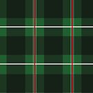Green Black and Red Striped Plaid by Samm Poirier