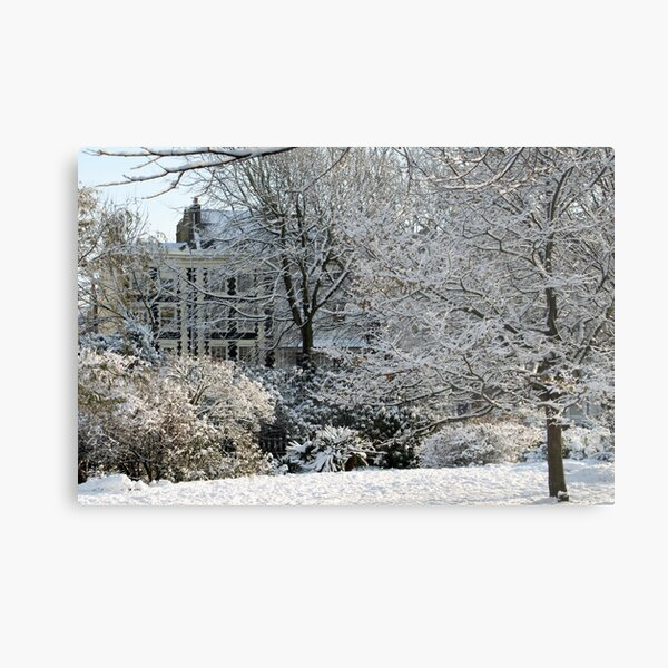 The icing on the Steine Metal Print