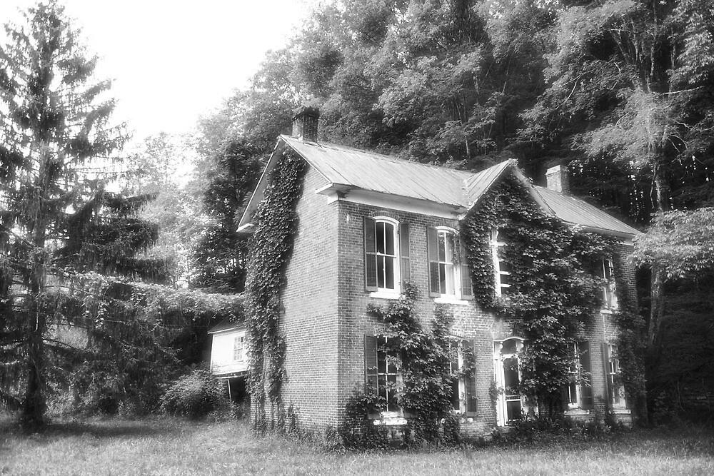 ivy house #2 by jbiller