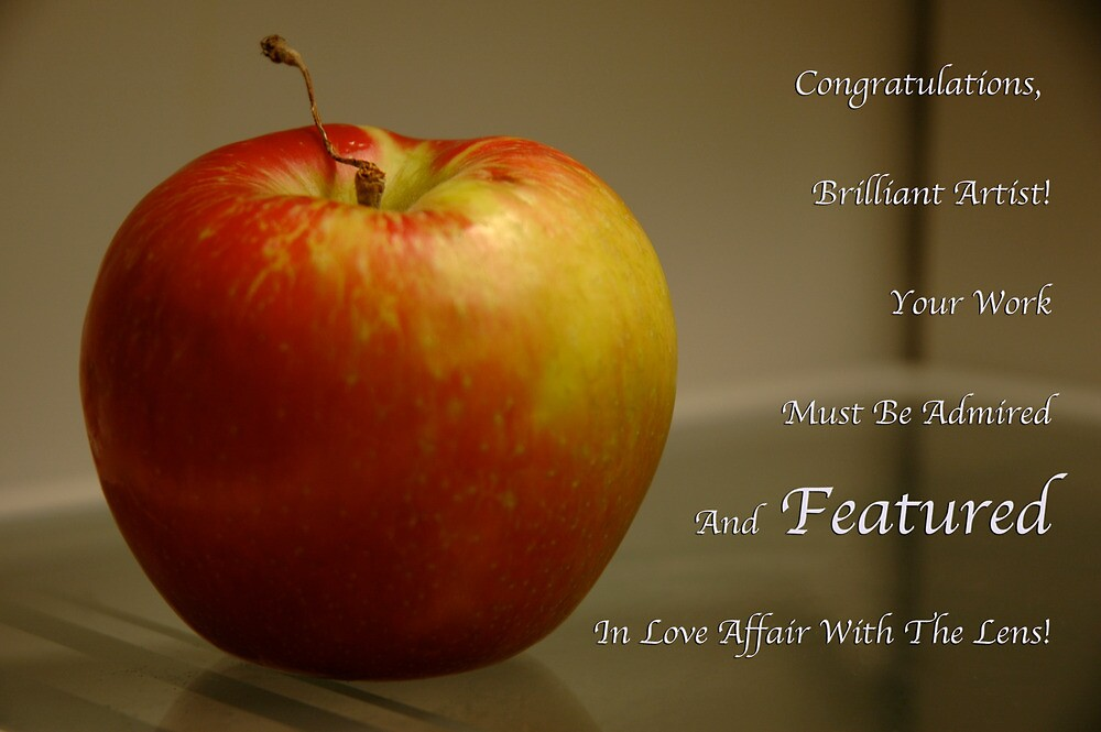 Love Affair With The Lens Feature Banner by Ainsley Kellar Creations