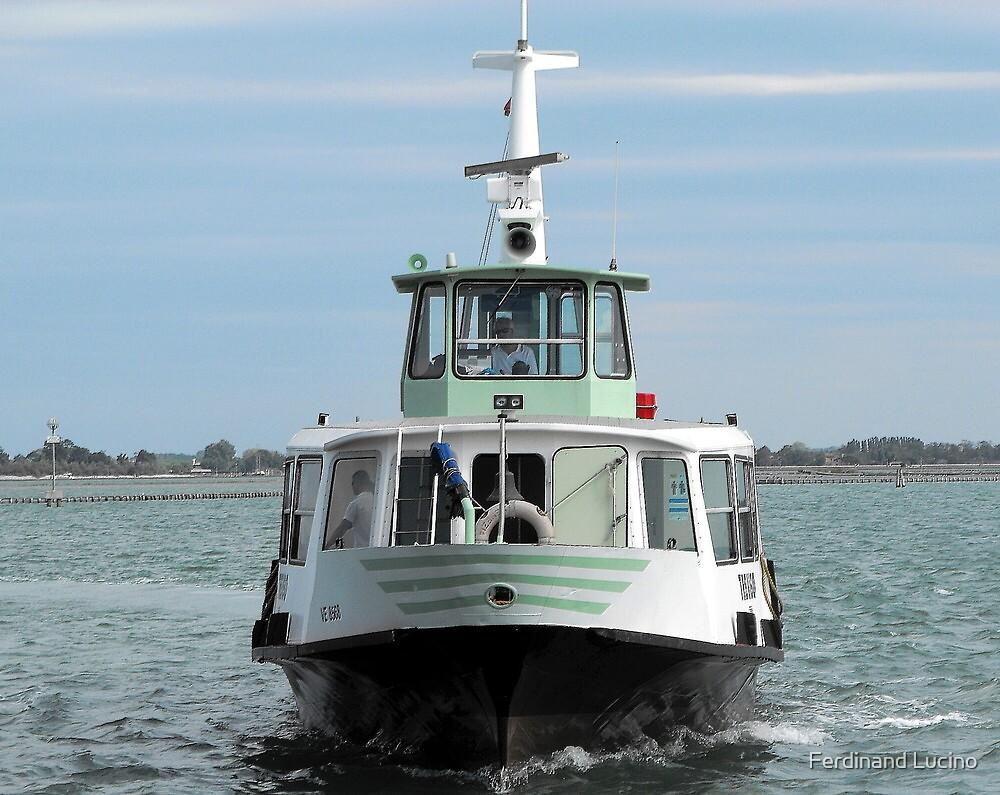 Eco-Waterbus, Venice by Ferdinand Lucino