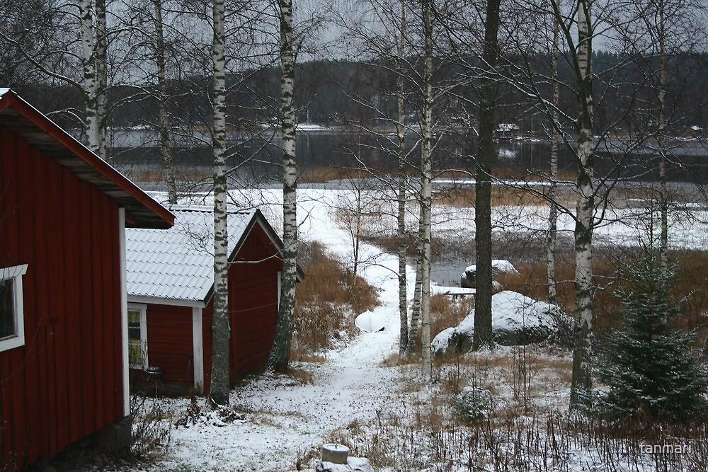 Path to the lake  by tanmari