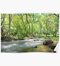 River Torrens Poster