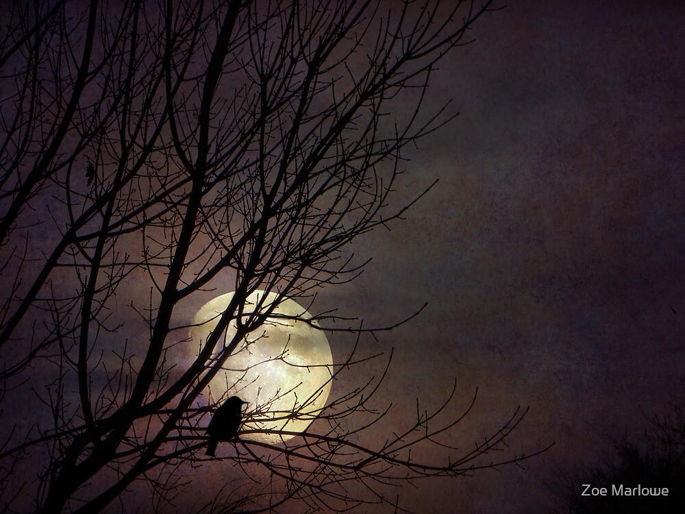 Midnight Clear by Zoe Marlowe