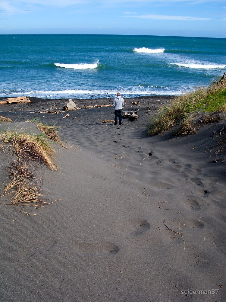 Surf Check - New Plymouth - New Zealand by spiderman37