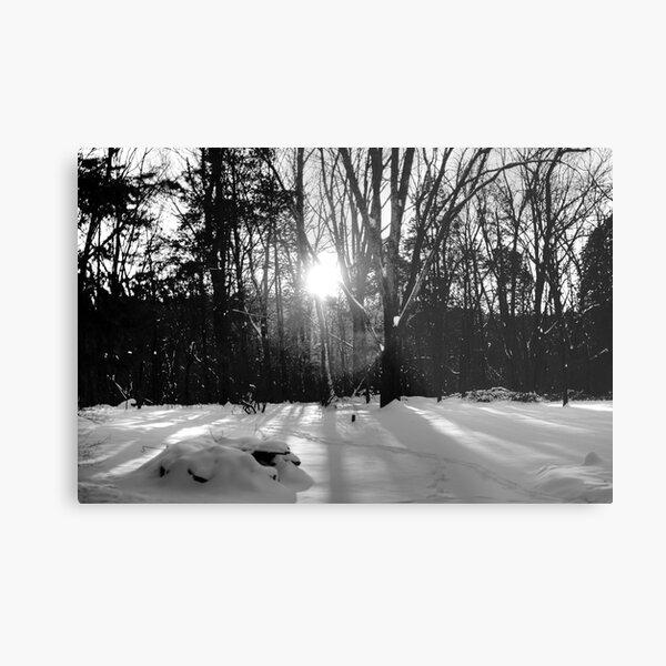 Snow B&W Metal Print