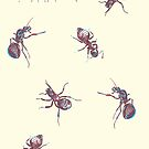 Ants pattern by experimentons