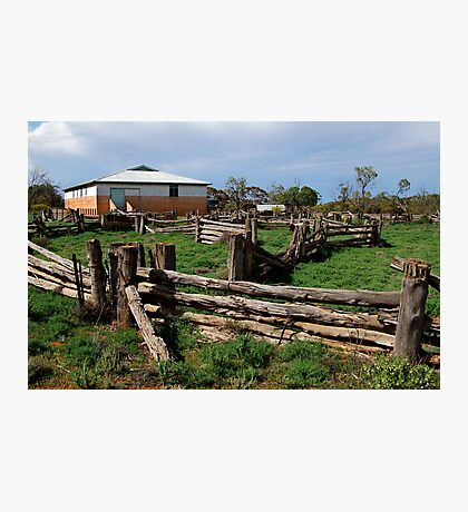 Historic Pastrol Shearing Shed, Canopus Photographic Print