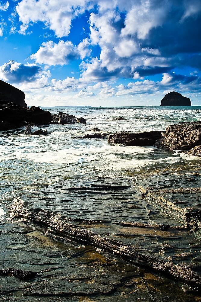 Gull Rock Trebarwith Strand II by David Wilkins