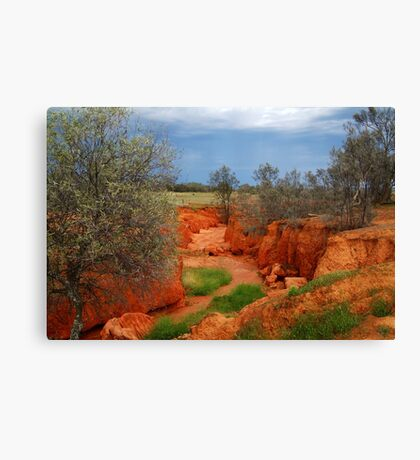 Natures Colours,Outback N.S.W. Canvas Print