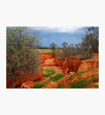 Natures Colours,Outback N.S.W. Photographic Print