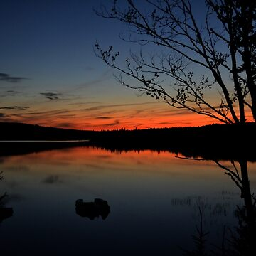 Heaven On Earth by MarthaMedford