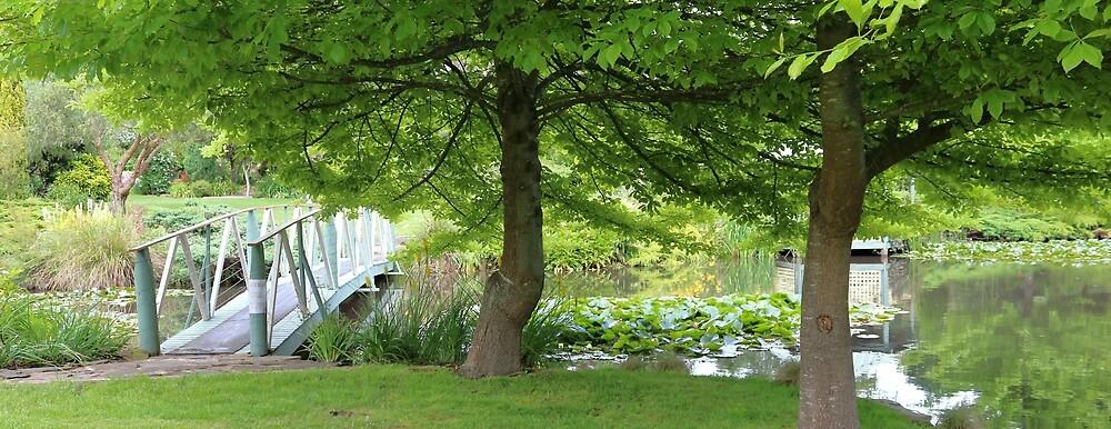 Altona Garden Retreat, South Spreyton by Gaylene Norton