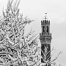 Winter in Siena by Marco Vegni