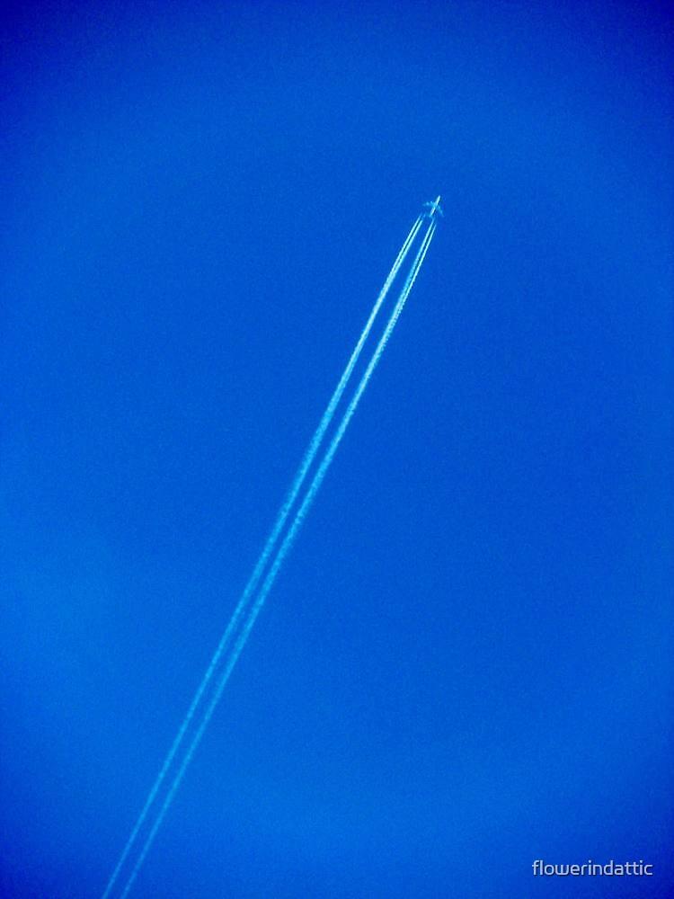 leaving on the jet plane by flowerindattic