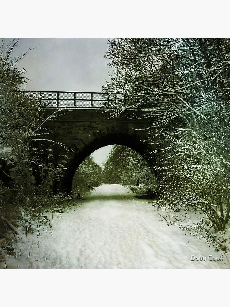 Winter Bridge by DougCook