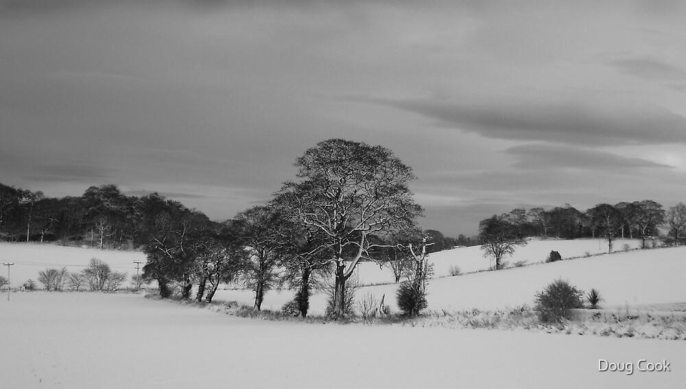 Dalmeny Winter Scene by Doug Cook
