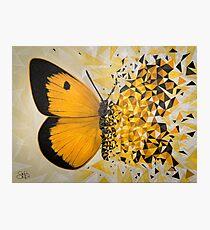 Explosión geométrica mariposa amarilla Lámina fotográfica