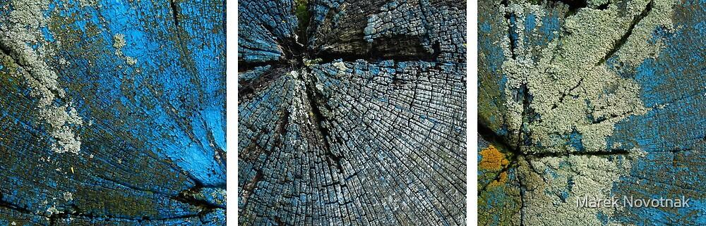 Surface I. by Marek Novotnak