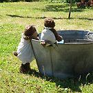 Teddy Bears Tin Bath by Dean Harkness