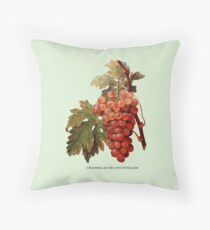 Vintage Grapes Floor Pillow