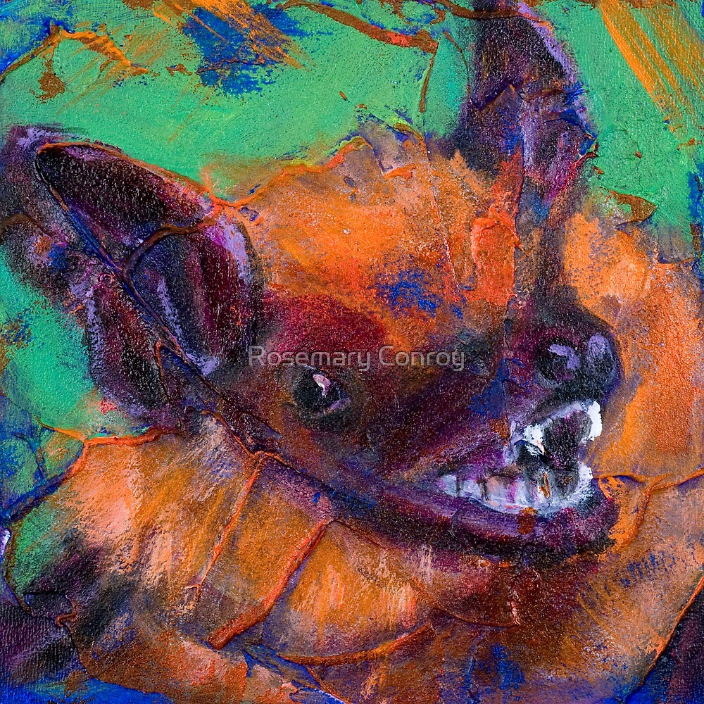 Earth Keeper: Big Brown Bat by Rosemary Conroy