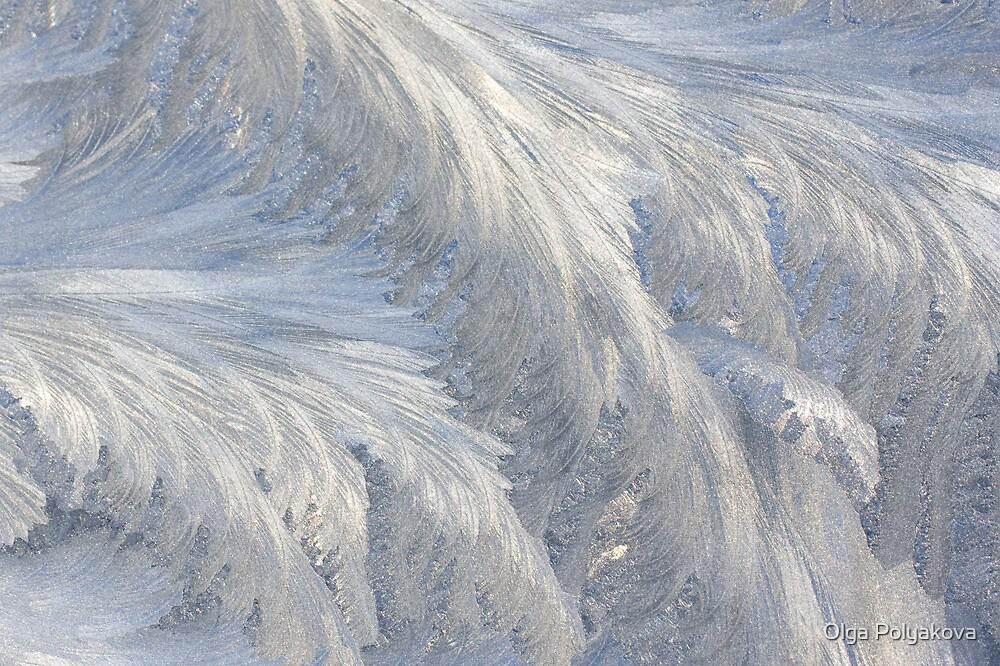 Frost on a window glass by Olga Polyakova