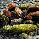 Moss covered rock in glacier bed by VisualFX