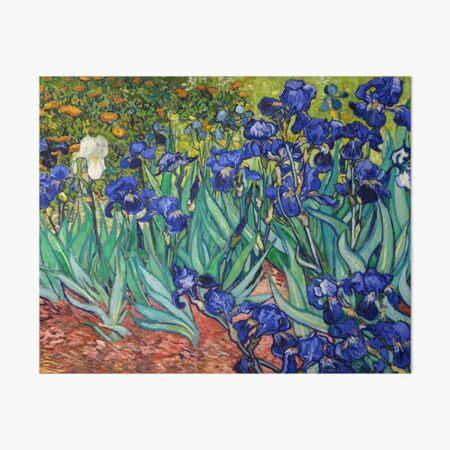 Irises by Vincent van Gogh Art Board Print