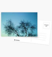Bare Postcards