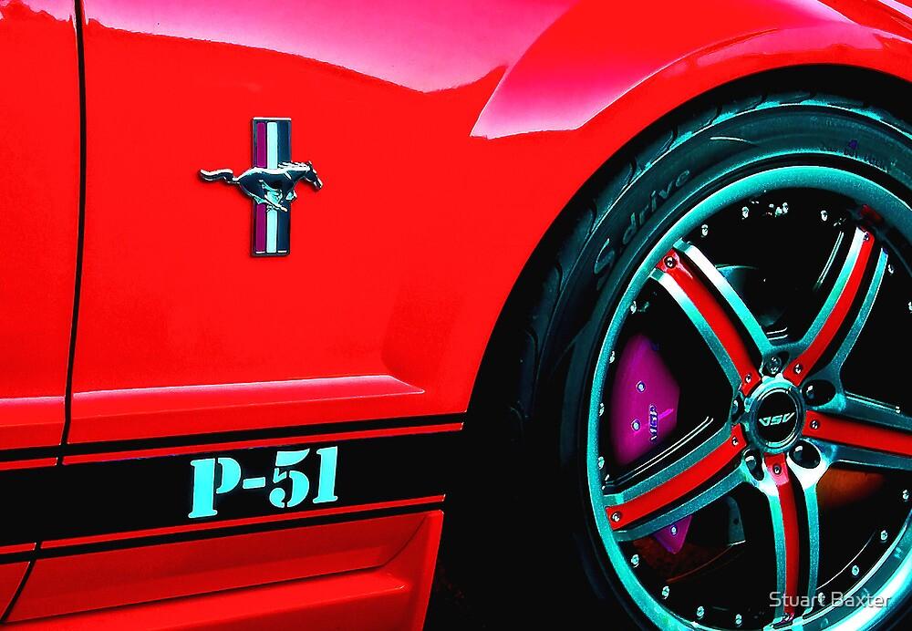 P51 by Stuart Baxter