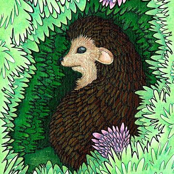 Hideaway Hedgehog by woaarts