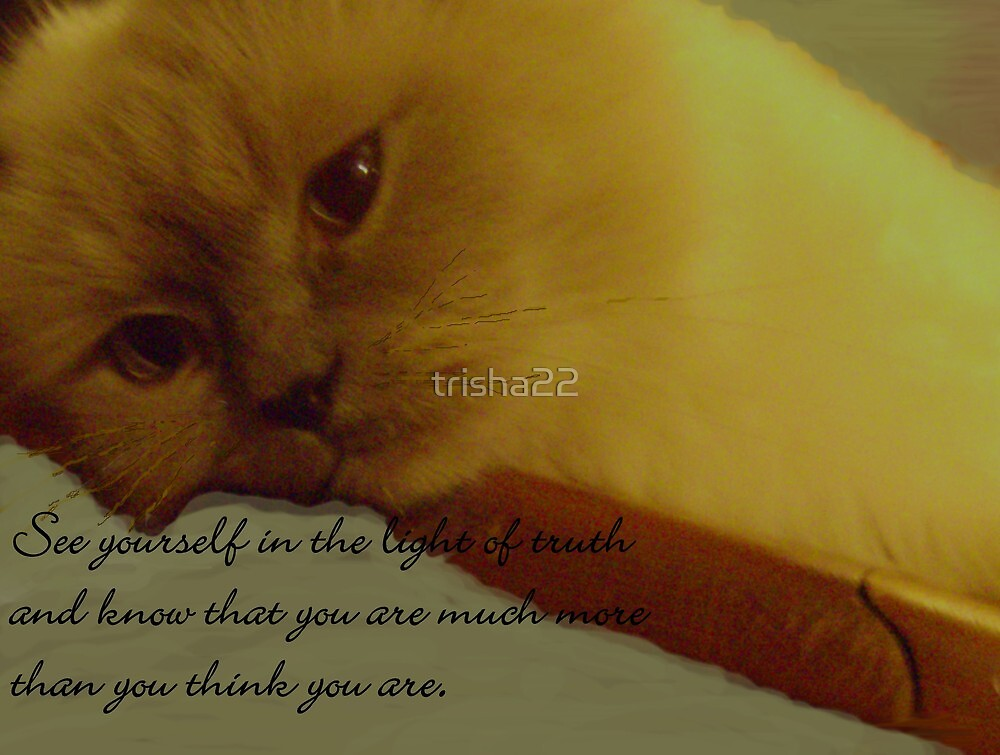MORE THAN YOU THINK by trisha22