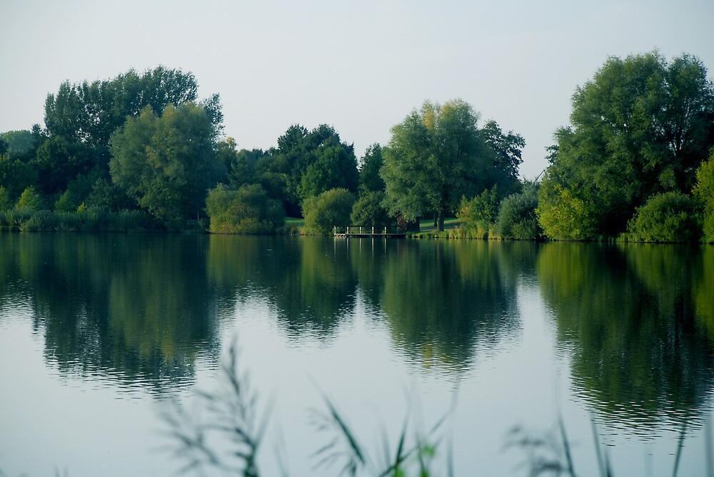 summer lake by Heike Nagel
