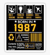 Birthday Gift Ideas - Born In 1987 Sticker