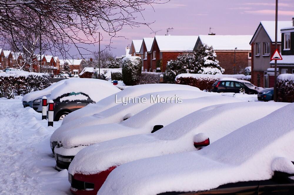 Snow Going Anywhere ......... by Lynne Morris