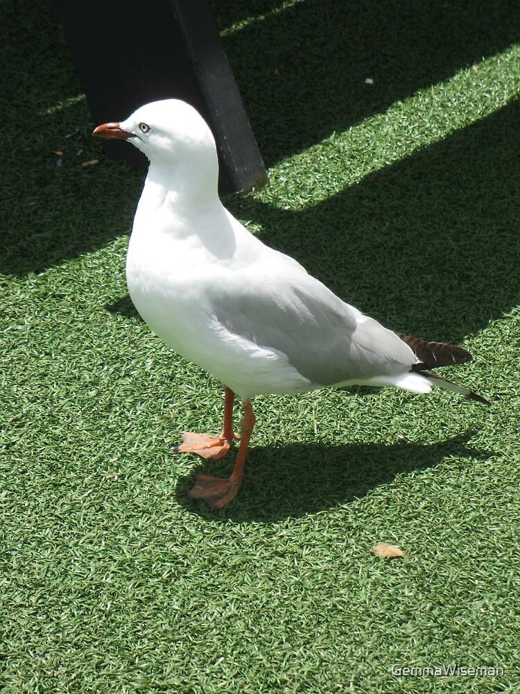 Fishy Seagull by GemmaWiseman