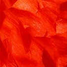 Crumpled Poppy Petal in Red Soft Flake Pattern by John Kelly Photography (UK)