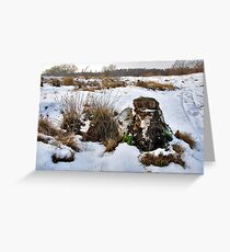 Snow in The Zeepe Greeting Card