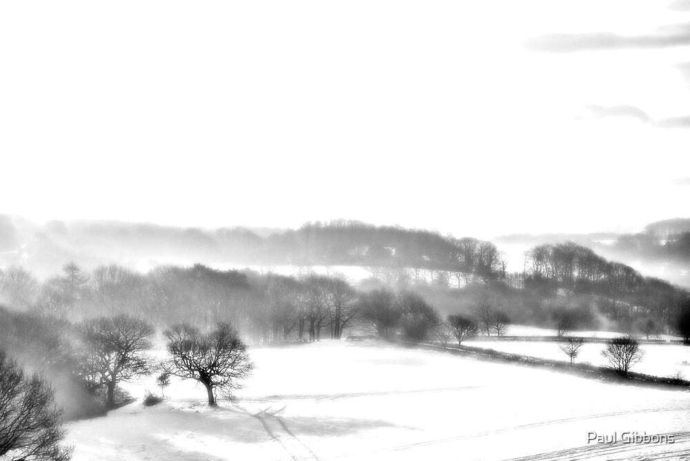 Bleak Winter by spottydog06